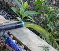 แก้ปัญหาน้ำเขียว บ้านลูกค้าอยู่ เพชรเกษม - บางแค (คุณยอด)