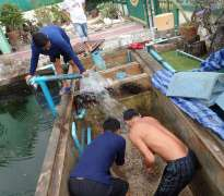 แก้ปัญหาน้ำเขียว บ้านลูกค้าอยู่ ท่าอิฐ - จ.นนทบุรี (คุณจูน)