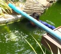 แก้ปัญหาน้ำเขียว บ้านลูกค้าอยู่ ปิ่นเกล้า - ตลิ่งชัน (คุณต่าย)